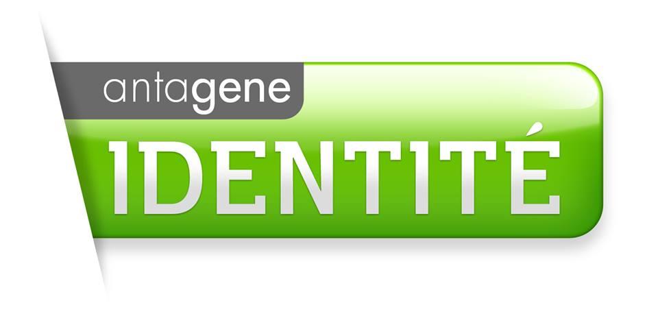 antagen-identite