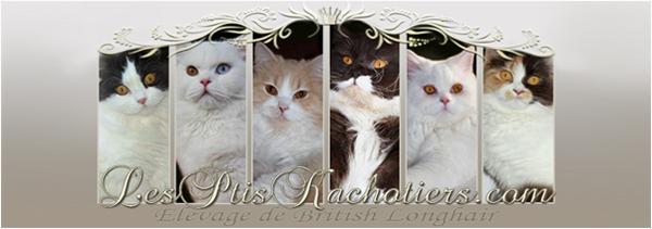 Partenaire de l'élevage LesPtisKachotiers